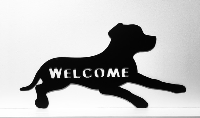 Lab Welcome